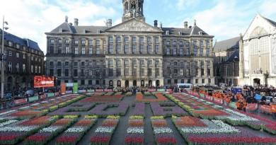 national tulip day_embassynews.net