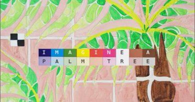 Imagine a palm tree